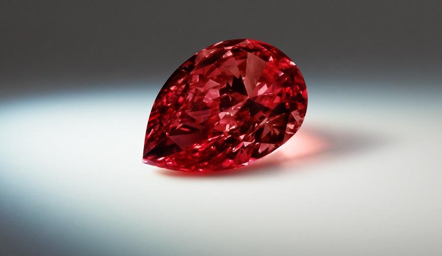 Rob Red Diamond Argyle